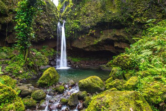 Emeralds Pool auf Dominica
