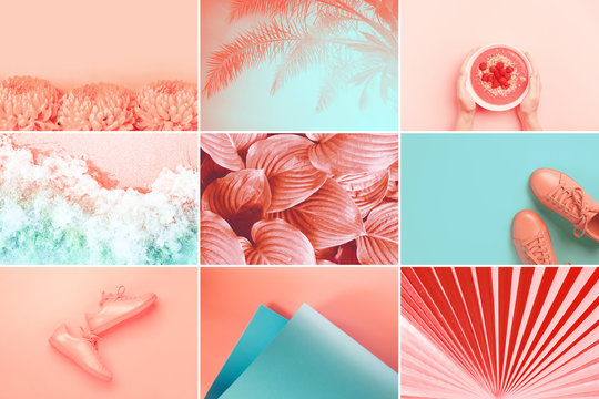 Collage made of nine photos in trendy living coral color. Trendy color of the 2019: Living Coral and Limpet Shell.