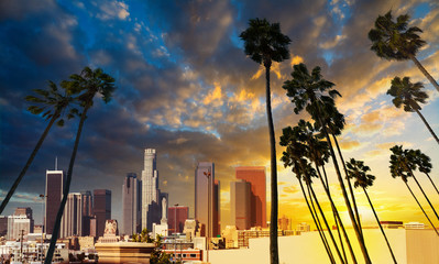 Wall Mural - Palm trees silhoeuttes with downtown Los Angeles on the background at sunset