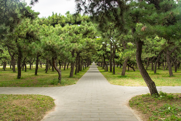 Beijing City Park
