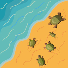 postcard with resting five different turtles crawling on the beach along the sand to the water on a warm sunny day