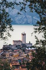 Blick auf die Burg von Malcesine durch Olivenbäume