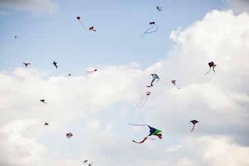 multiples kites flying in  a blue sky.