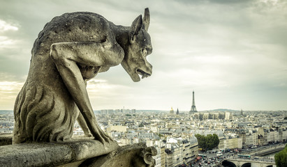 Fototapete - Gargoyle on the Cathedral of Notre Dame de Paris looks at the Eiffel Tower, Paris, France