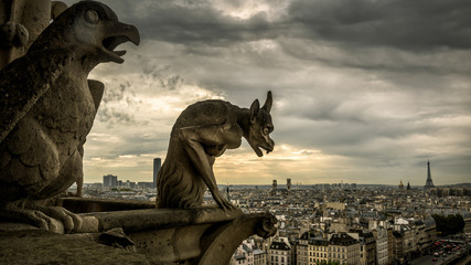 Fototapete - Gargoyles on the Cathedral of Notre Dame de Paris overlooking Paris, France