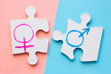 puzzle pieces with male and female gender symbols on the pink and blue background. concept equality