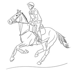 Equestrian event. Horseman cantering on a horse.