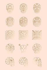 A Set of Human Skulls in Vector. Skulls and Bones Icons, Symbols for Branding