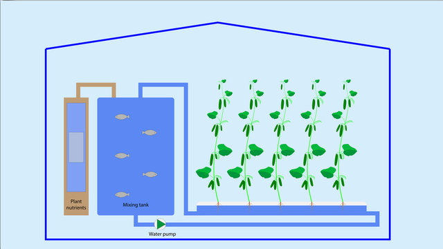 Illustration showing the schematic diagram of the hydroponics system.