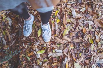 落ち葉とスニーカーを履いた女性の足元