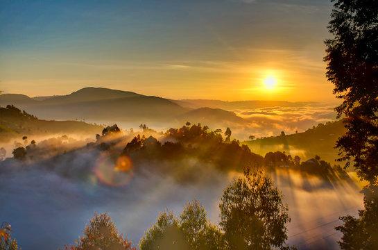 Uganda sunrise with trees, hills, shadows and morning fog