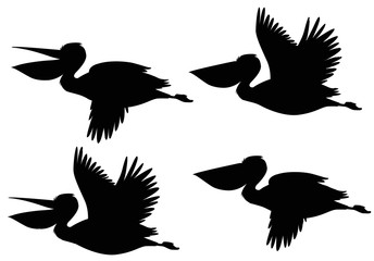 A set of silhouette pelican