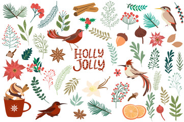 Collection elements for Merry Christmas and Happy New Year with christmas floral, spices and birds. Editable vector illustration