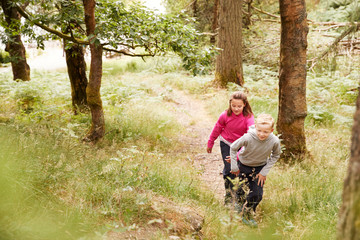 Elevated view of two children hiking up a slope in a forest, selective focus, full length