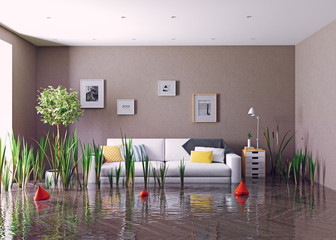 flooding living room.