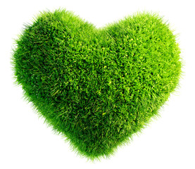 green leaves in heart shape isolated