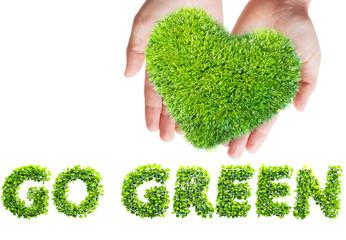 green leaves in heart shape in hands
