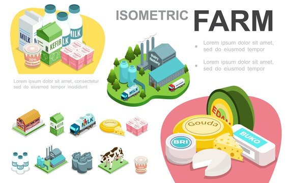 Isometric Dairy Industry Infographic Concept