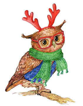 owl with antlers Christmas reindeer and scarf. illustration watercolor