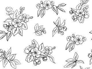 Ink hand drawn seamless pattern. Apple flowers and leaves for design. White background. Line art
