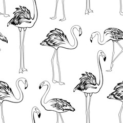 Flamingos black and white seamless pattern. Exotic wading birds in different postures. Detailed outline ink drawing.