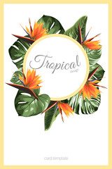 Exotic tropical greenery decoration round circle wreath design element. Monstera jungle palm rainforest tree leaves.
