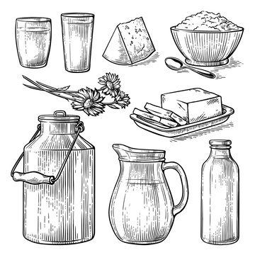 collection items dairy products drawing sketch glass milk bottle iron can cup cheese flowers crumbly curd vector illustration