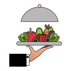 hand holding vegetables on dish healthy food