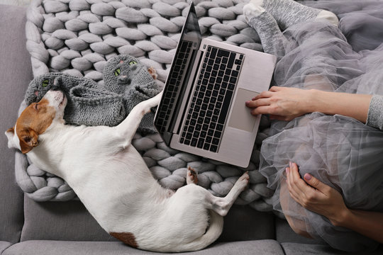 Cozy Woman covered with warm soft merino wool blanket watching movie, relaxing at home with dog . Carefree, comfort lifestyle.