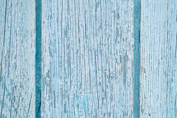 The texture of a blue wooden wall, background