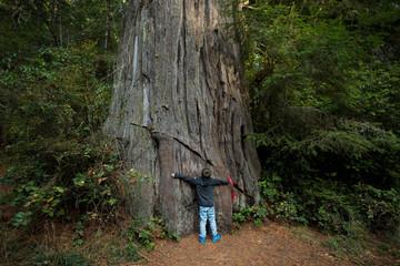 Kids Hiking at Lady Bird Johnson Grove Trail California Redwoods