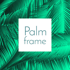 Palm Leaf Vector Illustration EPS10. Tropical Leaves. Realistic Coconut Foliage Set. Floral Elements. Collection of Jungle Plants. Summer Palm Leaf for Pattern, Print, Fabric or Your Trendy Design.