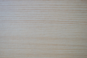 Wood texture. Closeup, carpenter.Wood texture background for design