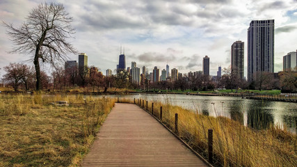 Wide scene of Chicago's skyline, as seen from South Pond Nature Boardwalk in Lincoln Park, with view of city's four tallest towers buildings. Urban landscape with modern architecture.