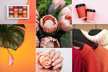 Creative collage in Living Coral color