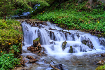 nature in spring. springtime landscape, wilderness scenery with fresh green grass, flowers,  flowing water , rocks and green trees in the woods. spring background outdoors