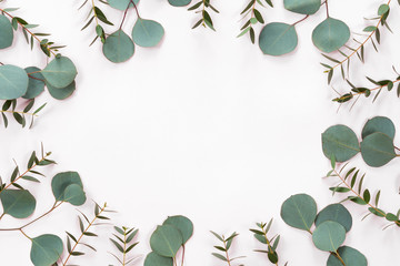 Spring or easter floral composotion with flowers, eucalyptus leaves on a white background, top view and flat lay, flower frame