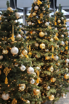 Row of christmas tree with gold and silver balls and shiny yellow electricity bulbs. New year pine with bright xtmas decoration. golden beautiful christmas tree and lights
