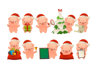 Collection of happy cute Christmas pig isolated vector