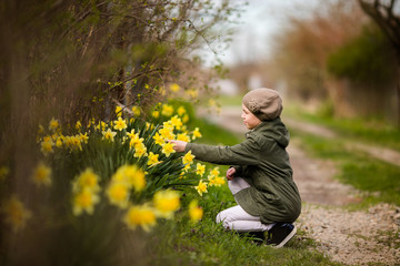 Cute happy little girl in the spring country smelling yellow daffodils