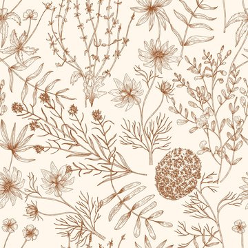 Monochrome seamless pattern with wild blooming meadow flowers and herbs drawn with contour lines on light background. Floral hand drawn vector illustration in vintage style for textile print.