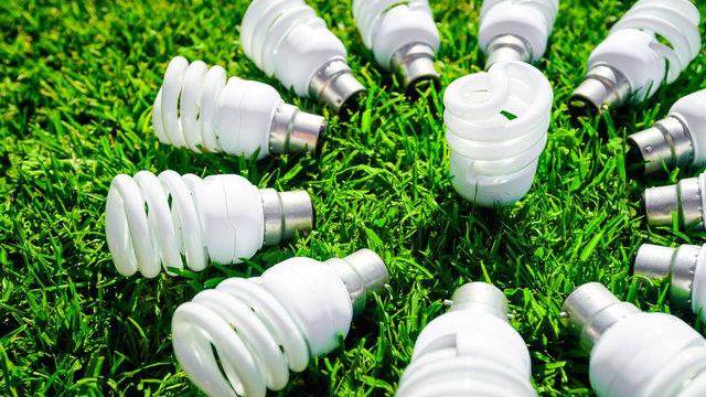 Energy saving light bulbs on green grass