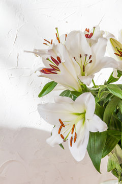 Flower bouquet, white lilies in a vase. White background.