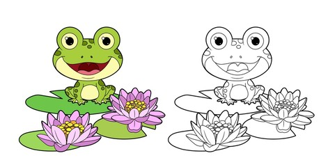 Cute frog sits on leaf of lily color and outlined linear drawing for coloring