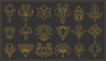 Art nouveau and art deco floral ornaments, modern flower vintage elements. Retro decoration style. Symbol tattoo. Wall mural
