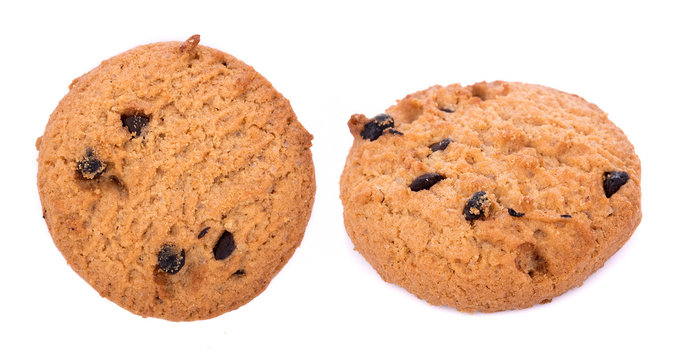 Chocolate chip cookie in bolwl on white background