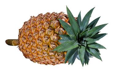 Fototapete - Fresh pineapple isolated on white background