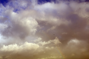 sky with clouds,seagull,weather,cloud, nature, storm,sunlight,dramatic, cloudy,atmosphere,beautiful