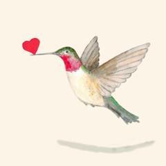 Hummingbird bird holding a heart in its beak.