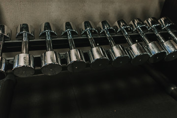 Set of dumbbells lying on rack in gym